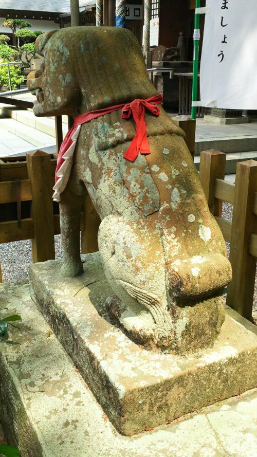 拝殿前の狛犬の後ろ姿