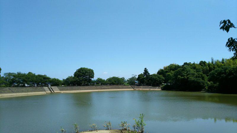 お寺の前には地蔵院池がある