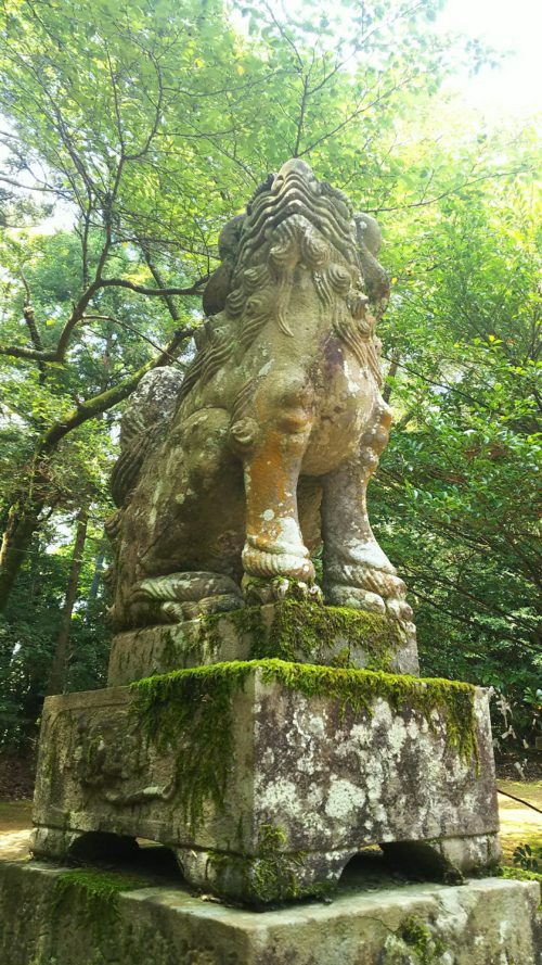 拝殿前の吽形の狛犬、苔むしている